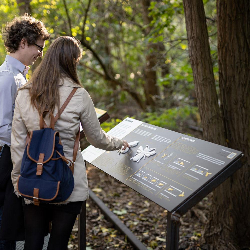 Des visiteurs découvrent la faune et la flore du parc grâce au toucher - © Grün Berlin / Frank Sperling